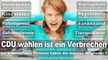 wahlplakate-cdu-spd-fdp-afd-piratenpartei-npd-linke-gruene-freie-waehler-stimmzettel-315
