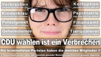 wahlplakate-cdu-spd-fdp-afd-piratenpartei-npd-linke-gruene-freie-waehler-stimmzettel-327