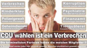 wahlplakate-cdu-spd-fdp-afd-piratenpartei-npd-linke-gruene-freie-waehler-stimmzettel-334