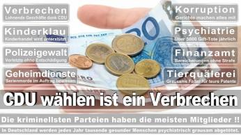 wahlplakate-cdu-spd-fdp-afd-piratenpartei-npd-linke-gruene-freie-waehler-stimmzettel-339