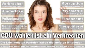 wahlplakate-cdu-spd-fdp-afd-piratenpartei-npd-linke-gruene-freie-waehler-stimmzettel-341