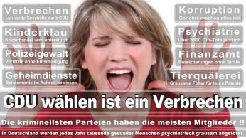 wahlplakate-cdu-spd-fdp-afd-piratenpartei-npd-linke-gruene-freie-waehler-stimmzettel-344