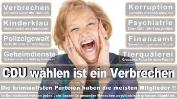 wahlplakate-cdu-spd-fdp-afd-piratenpartei-npd-linke-gruene-freie-waehler-stimmzettel-349