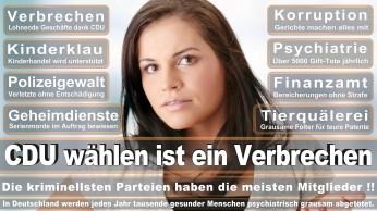 wahlplakate-cdu-spd-fdp-afd-piratenpartei-npd-linke-gruene-freie-waehler-stimmzettel-352