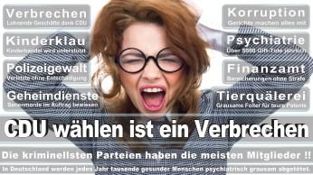 wahlplakate-cdu-spd-fdp-afd-piratenpartei-npd-linke-gruene-freie-waehler-stimmzettel-364