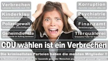 wahlplakate-cdu-spd-fdp-afd-piratenpartei-npd-linke-gruene-freie-waehler-stimmzettel-367