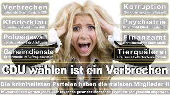wahlplakate-cdu-spd-fdp-afd-piratenpartei-npd-linke-gruene-freie-waehler-stimmzettel-368