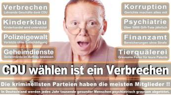 wahlplakate-cdu-spd-fdp-afd-piratenpartei-npd-linke-gruene-freie-waehler-stimmzettel-373