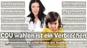 wahlplakate-cdu-spd-fdp-afd-piratenpartei-npd-linke-gruene-freie-waehler-stimmzettel-375