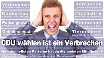 wahlplakate-cdu-spd-fdp-afd-piratenpartei-npd-linke-gruene-freie-waehler-stimmzettel-378