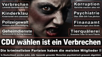 wahlplakate-cdu-spd-fdp-afd-piratenpartei-npd-linke-gruene-freie-waehler-stimmzettel-41