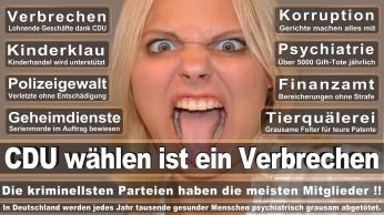 wahlplakate-cdu-spd-fdp-afd-piratenpartei-npd-linke-gruene-freie-waehler-stimmzettel-42