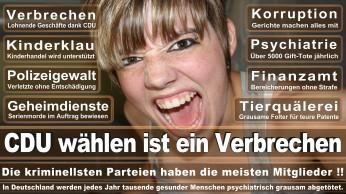 wahlplakate-cdu-spd-fdp-afd-piratenpartei-npd-linke-gruene-freie-waehler-stimmzettel-43