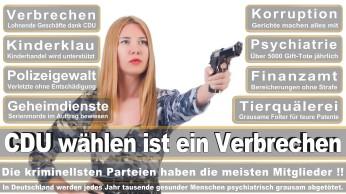 wahlplakate-cdu-spd-fdp-afd-piratenpartei-npd-linke-gruene-freie-waehler-stimmzettel-50