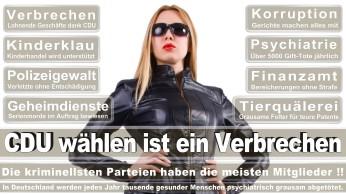 wahlplakate-cdu-spd-fdp-afd-piratenpartei-npd-linke-gruene-freie-waehler-stimmzettel-57