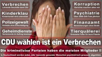 wahlplakate-cdu-spd-fdp-afd-piratenpartei-npd-linke-gruene-freie-waehler-stimmzettel-66