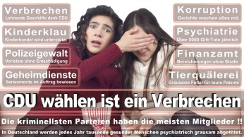 wahlplakate-cdu-spd-fdp-afd-piratenpartei-npd-linke-gruene-freie-waehler-stimmzettel-70