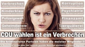 wahlplakate-cdu-spd-fdp-afd-piratenpartei-npd-linke-gruene-freie-waehler-stimmzettel-76