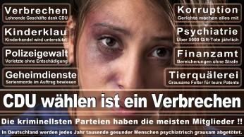 wahlplakate-cdu-spd-fdp-afd-piratenpartei-npd-linke-gruene-freie-waehler-stimmzettel-77