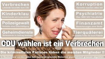 wahlplakate-cdu-spd-fdp-afd-piratenpartei-npd-linke-gruene-freie-waehler-stimmzettel-84