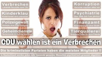 wahlplakate-cdu-spd-fdp-afd-piratenpartei-npd-linke-gruene-freie-waehler-stimmzettel-97